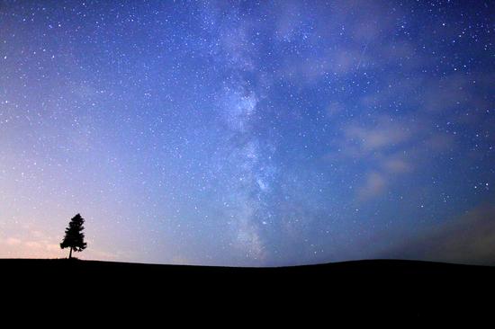 IMG_8460-1.jpg